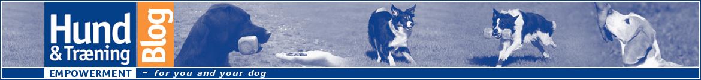 Hund & Træning